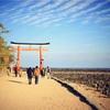 縁結びのパワースポット!宮崎県・青島神社。
