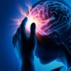 決定版! 小脳のリハビリのポイント解説