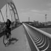 【今日の1枚】遠近感が出ると、短い橋もなが〜く見えるよね