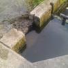田んぼの水入れを行いましたが、なかなか入りませんでした(^^;