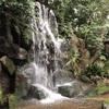 王子さんぽ。王子稲荷神社・音無親水公園・名主の滝公園
