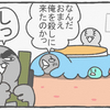 ハトぱっぱ33