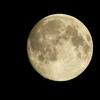 2019-1/21( しし座・満月 )〜のエネルギーなどの状態