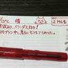 【万年筆・インク】妻のねこ日記・2020年06月第4週!【猫写真と猫イラスト】