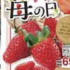 デザイン 図形使い イラスト 1月5日は苺の日 しずてつストア 1月5日号