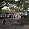 神戸市立王子動物園に無料で入園できるお得な日!神戸観光の日にはぜひ遊びに行きたい!