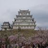 もう一度行きたい桜の名所【姫路城】(後編)
