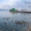 観光&レジャースポット 福島県猪苗代町 冬の猪苗代湖と天鏡郭✨