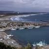 【千葉県】大原漁港 港の朝市が最高に美味しい。