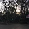 摺鉢山古墳 (再訪)  台東区上野公園