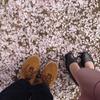小京都 秋月(秋月城跡ほか)ー福岡県