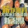 新潟県立 大潟水と森公園では公園サポーターを募集しており、伐採木がもらえるチャンスがあります
