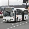 鹿児島交通(元京王バス) 989号車