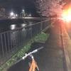 オオサンショウウオが見れた!途中で雨が降ってきたけど自転車で帰ってよかった。