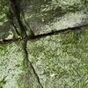 史跡探訪 人の手で掘った名残がある堀川