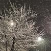 慣れない雪かきをした後は、アロマでケアしてみませんか。