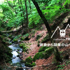 【奥多摩・鷹ノ巣山トレラン】石尾根から沢登りで有名な水根沢へ 前編