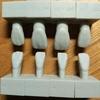 イヌの歯の形状を理解して、歯磨き方法を考える!②