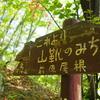 【秩父】破風山 新緑の皆野アルプス、滝と化石とツツジの秩父路