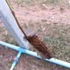 農業用給水ポリマー(SAP)に意外な落とし穴があった…