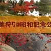東京の紅葉はここしか無い!立川『昭和記念公園』