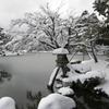 徽軫灯籠雪景色