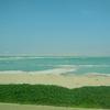 【聖地巡礼】イスラエル放浪記⑥死海遊泳