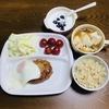 今日のランナーご飯⑧【今日のメインはハンバーグ】