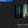 【outguess】画像ファイルに秘密ファイルを埋め込む!?