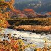 秋の長良川鉄道