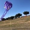 【元日】凧揚げ! 蛸の凧を2019年の空へ!