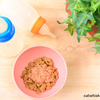 健康的な食習慣は赤ちゃんの時から始めよう!アメリカ・研究