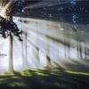 8回目の着床と経過 ② →稽留流産 …そして一筋の光