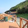 今年の夏の出撃は四国へ 3日目 竜ヶ浜でシュノーケリング