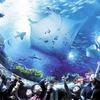 【最大1000円も安い!】香港のオーシャンパーク(香港海洋公園)の割引チケットを買う方法