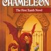 魔法の国ザンス イマジンブレイカーのビンクと謎の女性カメレオンの大冒険