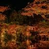 【京都】〜ライトアップ紅葉!醍醐寺へ行ってきました〜