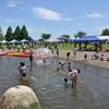「第21回泳げる霞ヶ浦市民フェスティバル」に参加しました。(平成28年7月18日)
