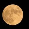 8月の満月「スタージェンムーン」+「α」を見たよ!