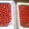ふるさと納税、届きました!! 今度は3kgのイチゴです!! (*'▽')