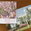 第510回 新刊紹介 写真絵本『さくららら』