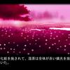 『腐り姫』を読む 補遺Ⅱ(感想・レビュー)