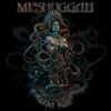 The violent sleep of reason / Meshuggah
