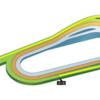 第402R 京都競馬 きさらぎ賞(GⅢ) 参考データ
