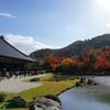 【旅】 京都 天龍寺 景色 紅葉🍁