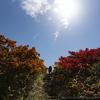 2019-09-27 秋田駒ヶ岳