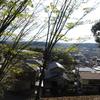 考霊天皇陵、武烈天皇陵、顕宗天皇陵(奈良県)を訪問
