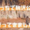 【散歩】ぼっちで駒沢公園行ってきたよ!坂本龍一のおすすめ楽譜もGET!