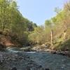テンカラ釣行記:2018年5月上旬の裾花川上流域にて、渓相の移ろいと9寸イワナと