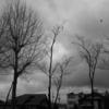 曇り空と 28mm
